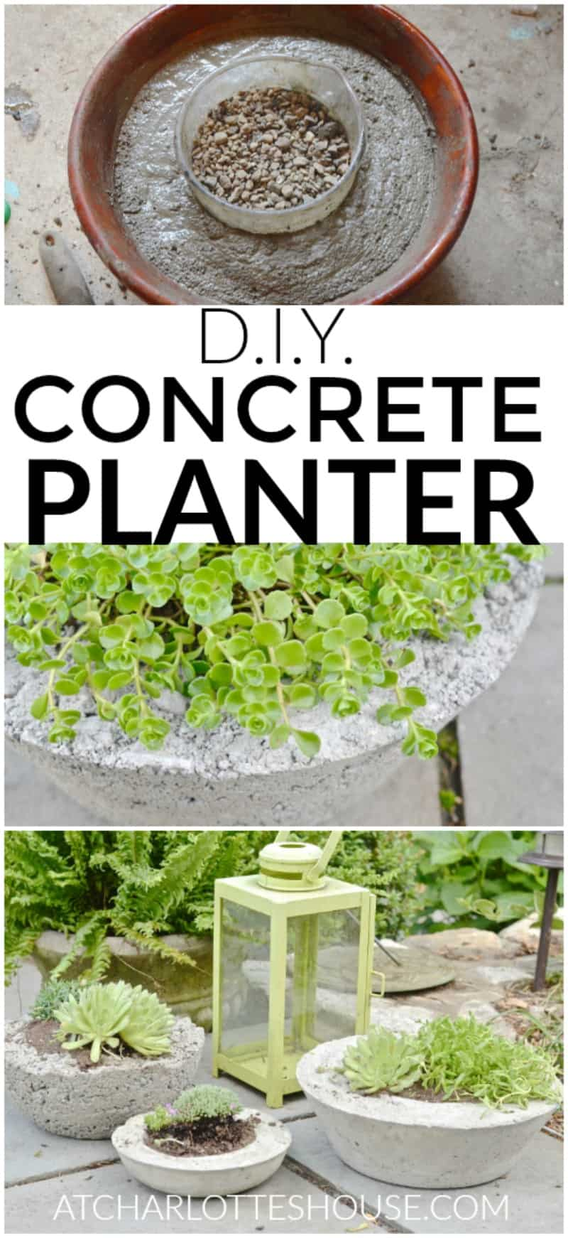 These concrete planters are hands down the favorite thing I've made for our backyard!