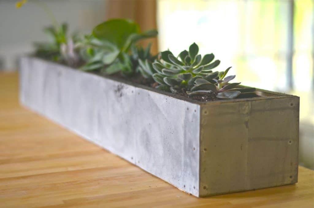 """""""Zinc"""" Succulent Planter"""