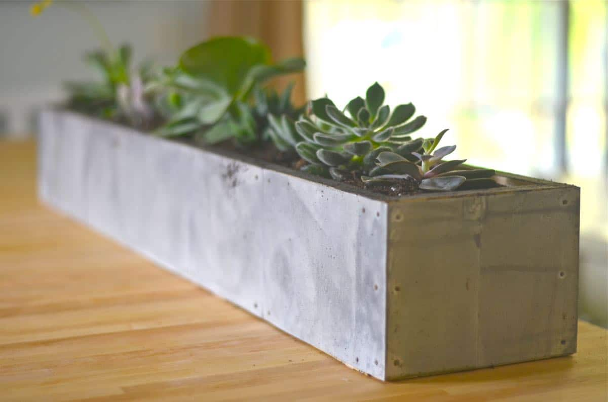 Charming Diy Succulent Planter With Zinc Patina