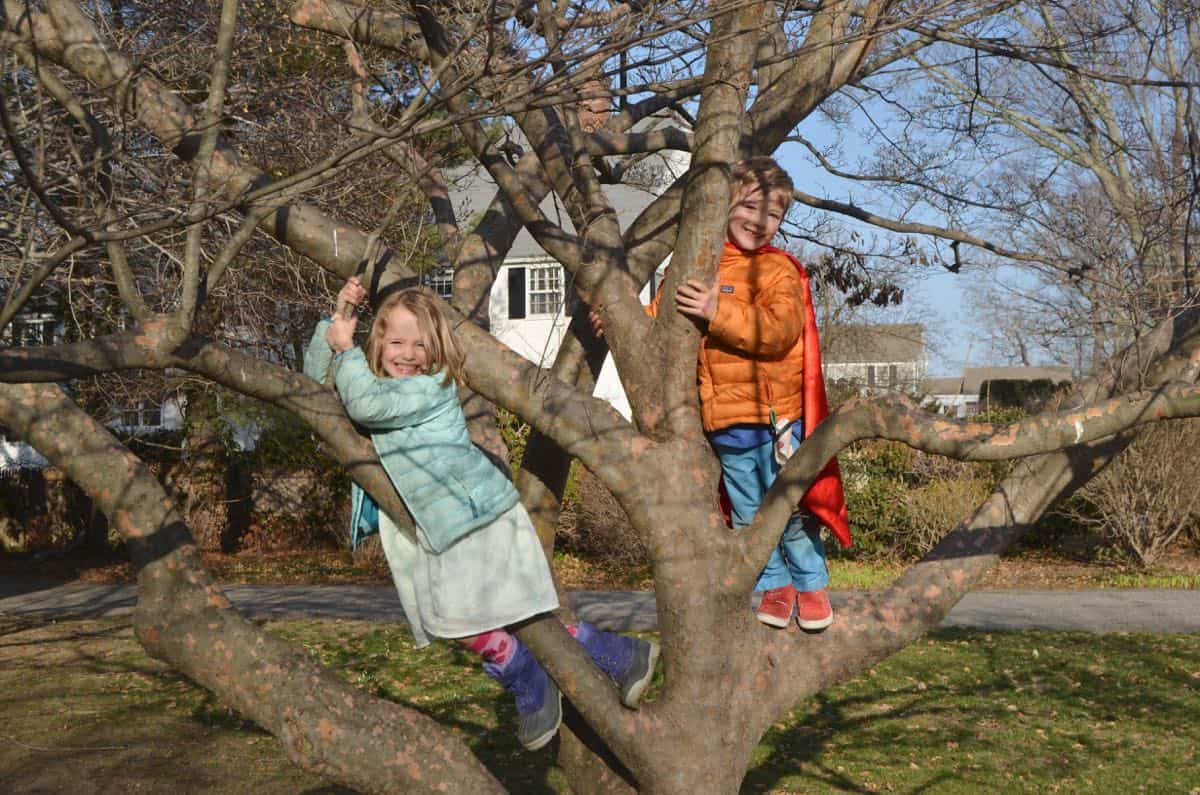kids in climbing tree at the new house