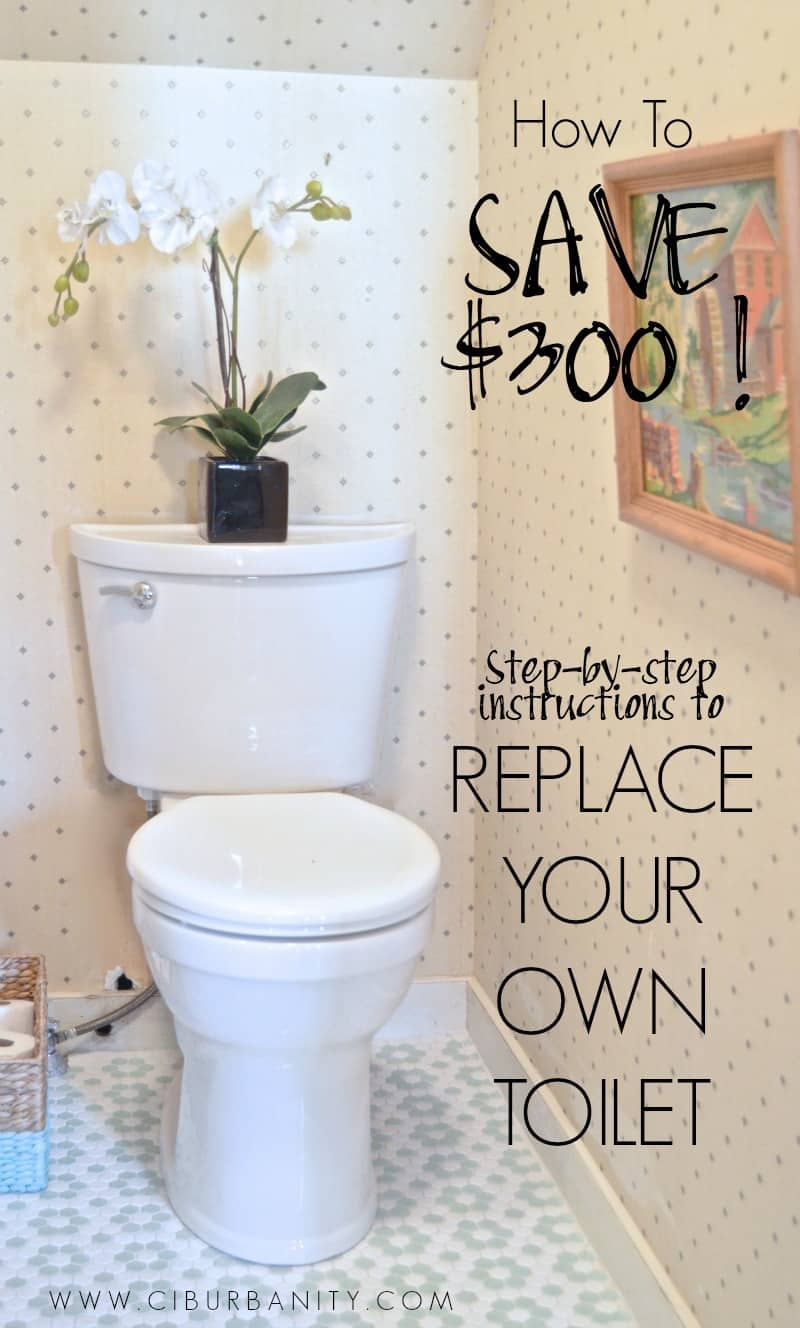 Replace Your Own Toilet