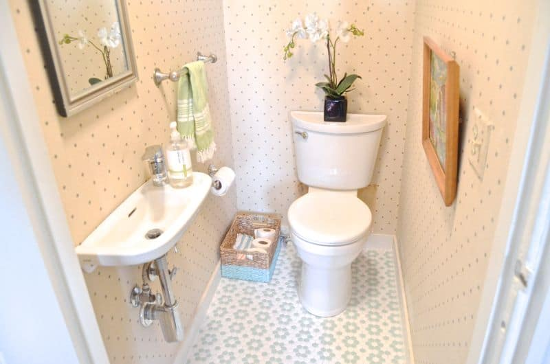 toilet in powder room