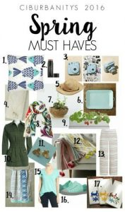 Spring Must Haves excerpt