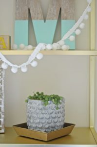 succulent and ball fringe