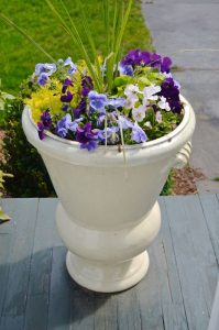 front planters with pansies