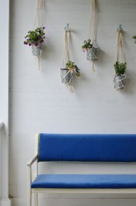 wall of hanging planters