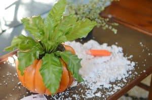 messy-styrofoam-of-pumpkin