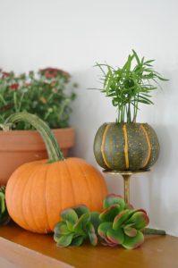 succulent-on-fall-mantel