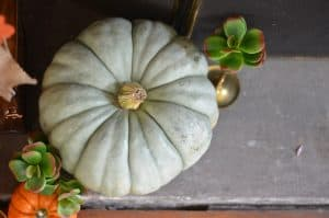 ugly-pumpkin-fall-decor