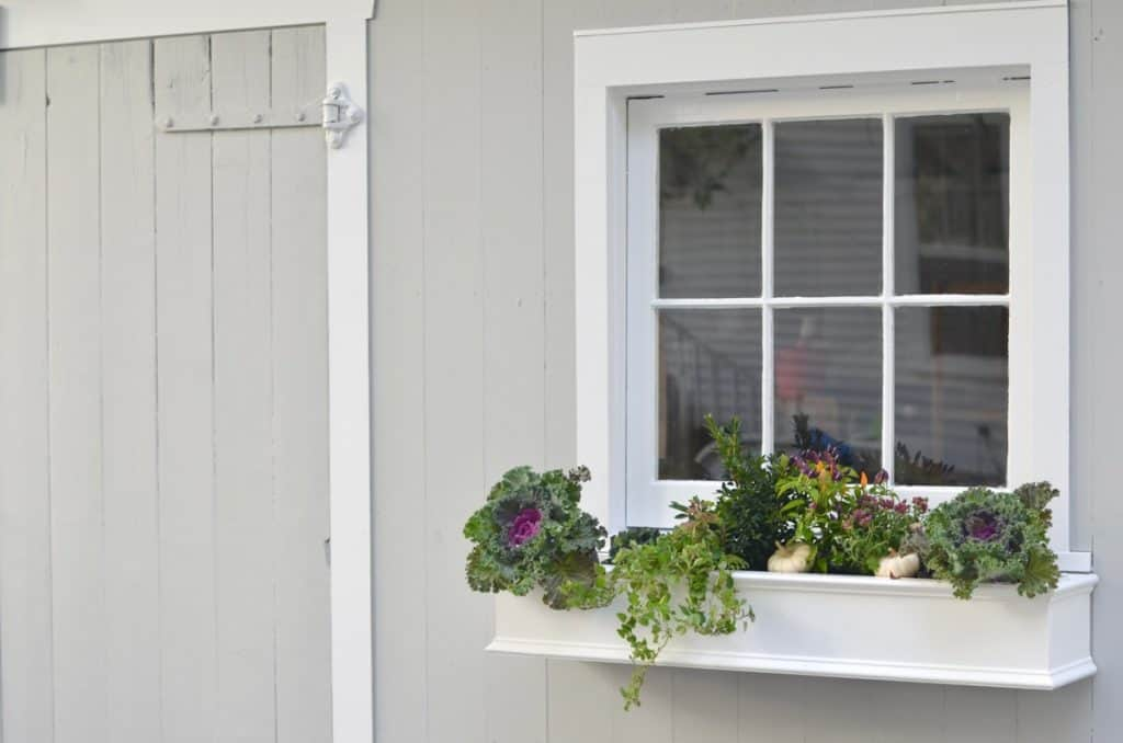 Window Boxes for the Shed- ORC Week 3