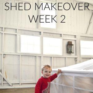 shed-makeover-week-2