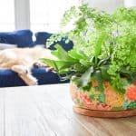 spring you tube planter