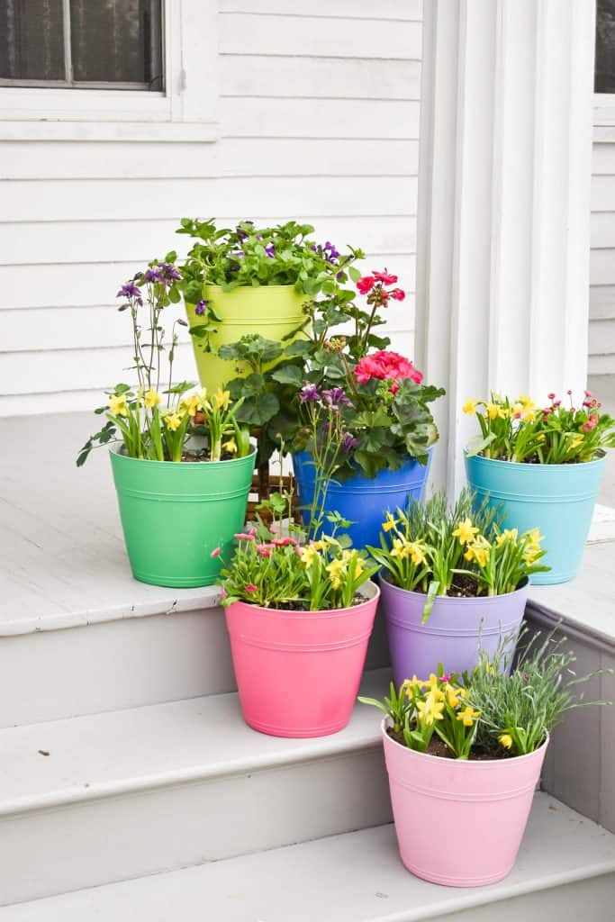 colorful planters painted with homeright spray tent