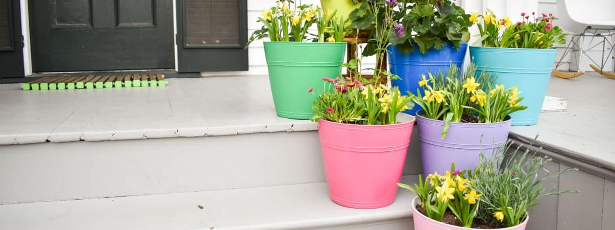 Spray Shelter and Spring Planters