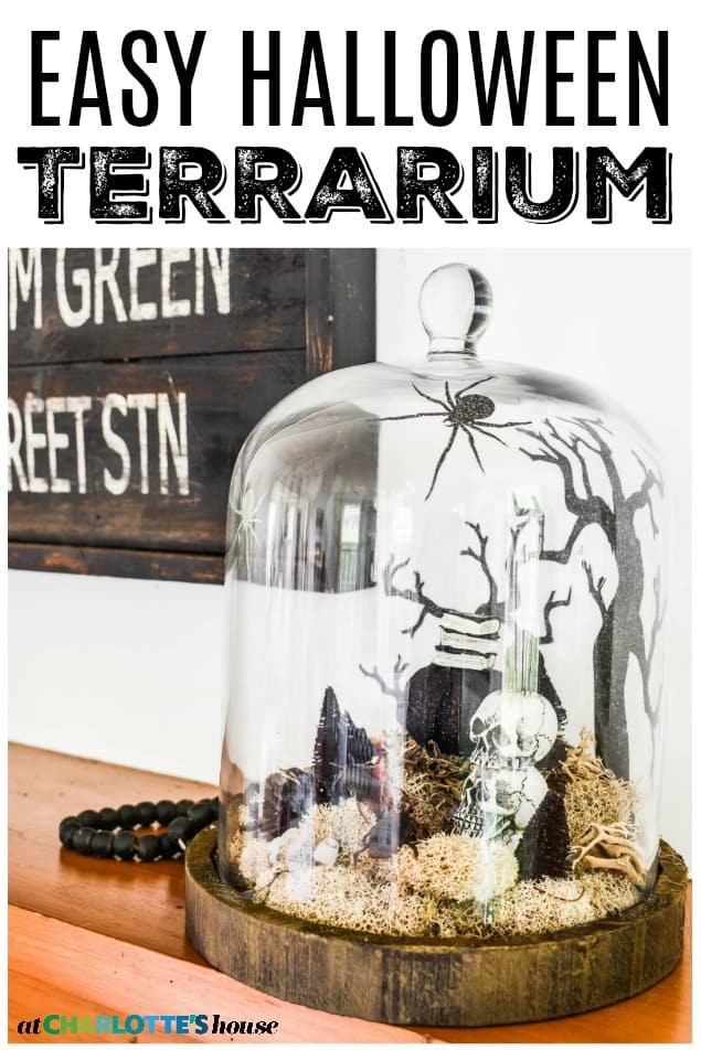 simple glass terrarium for halloween