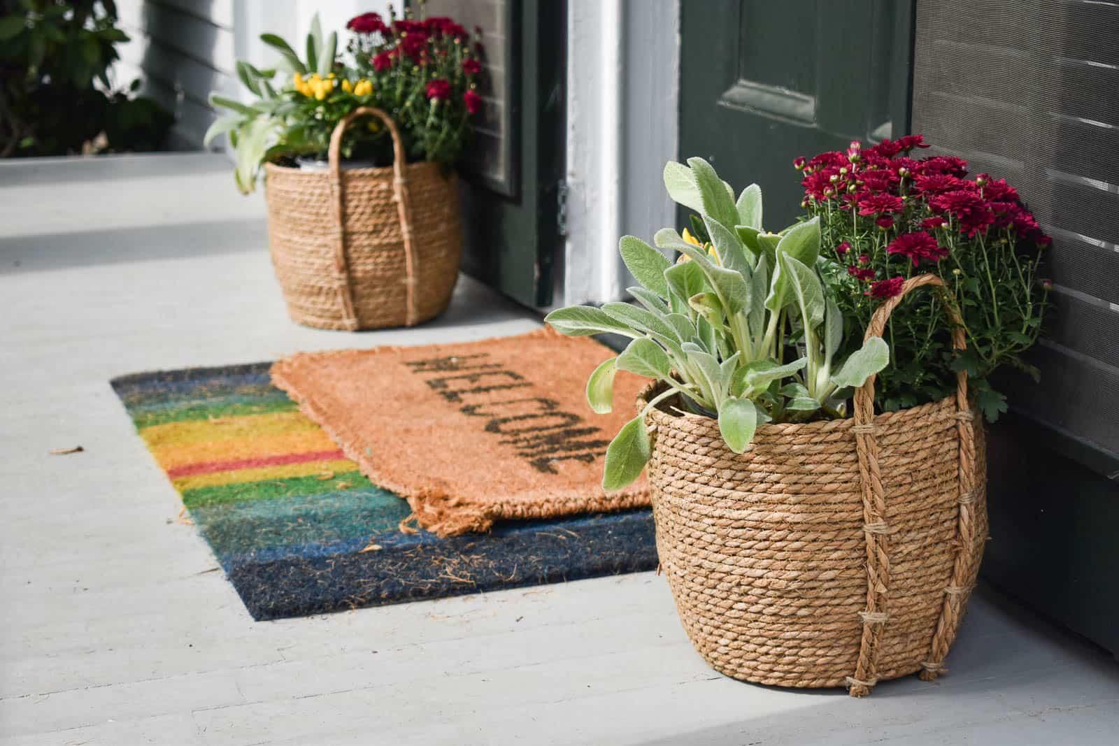 plants next to door on front porch