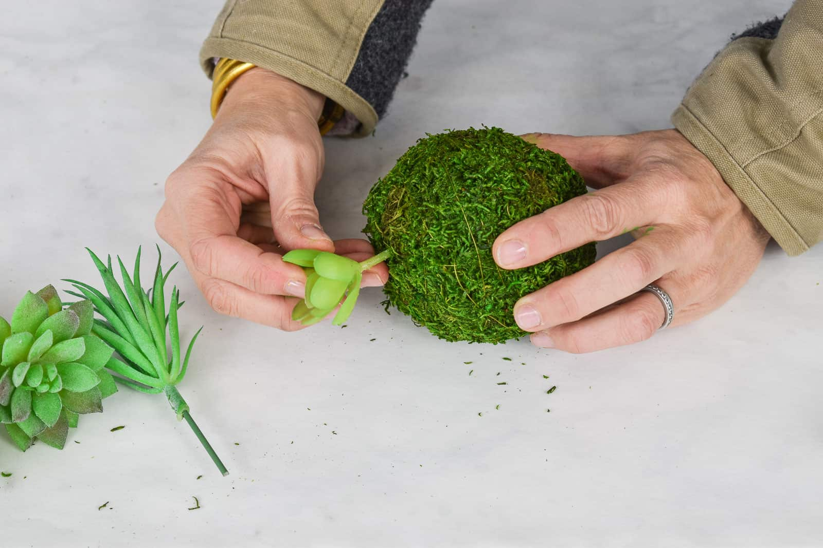 stick succulents into moss ball