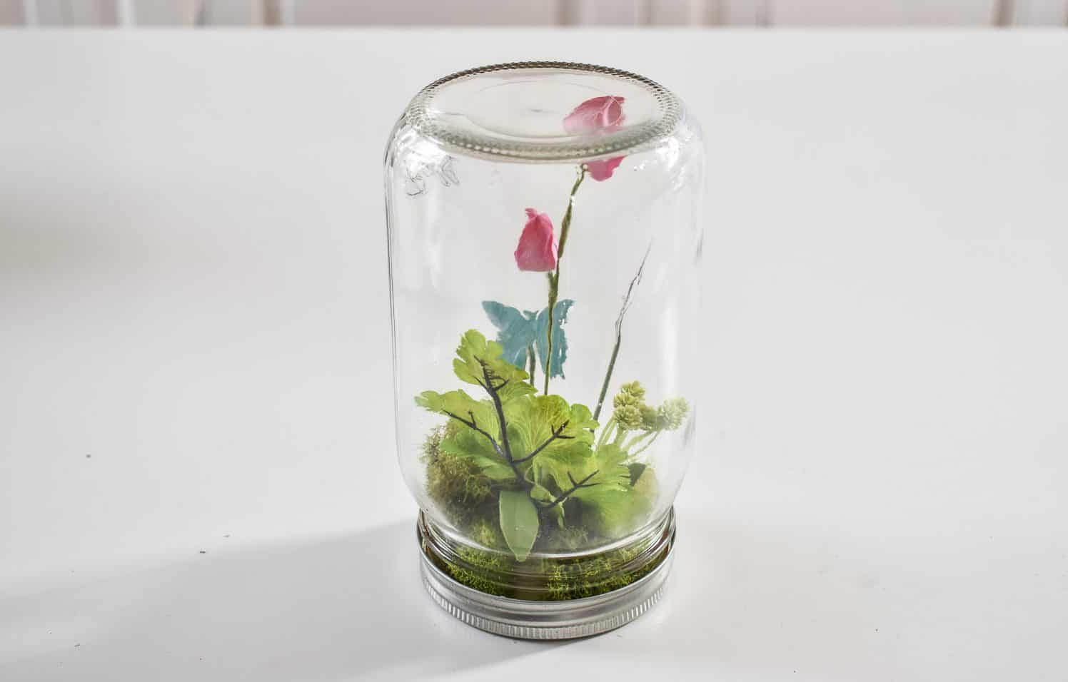 simple mason jar butterfly terrarium