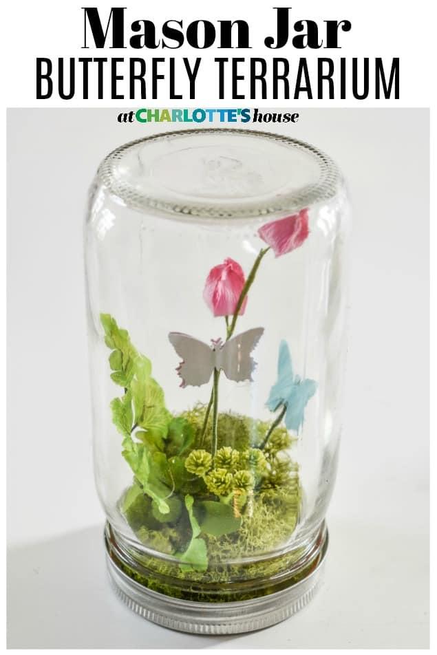 mason jar butterfly terrarium