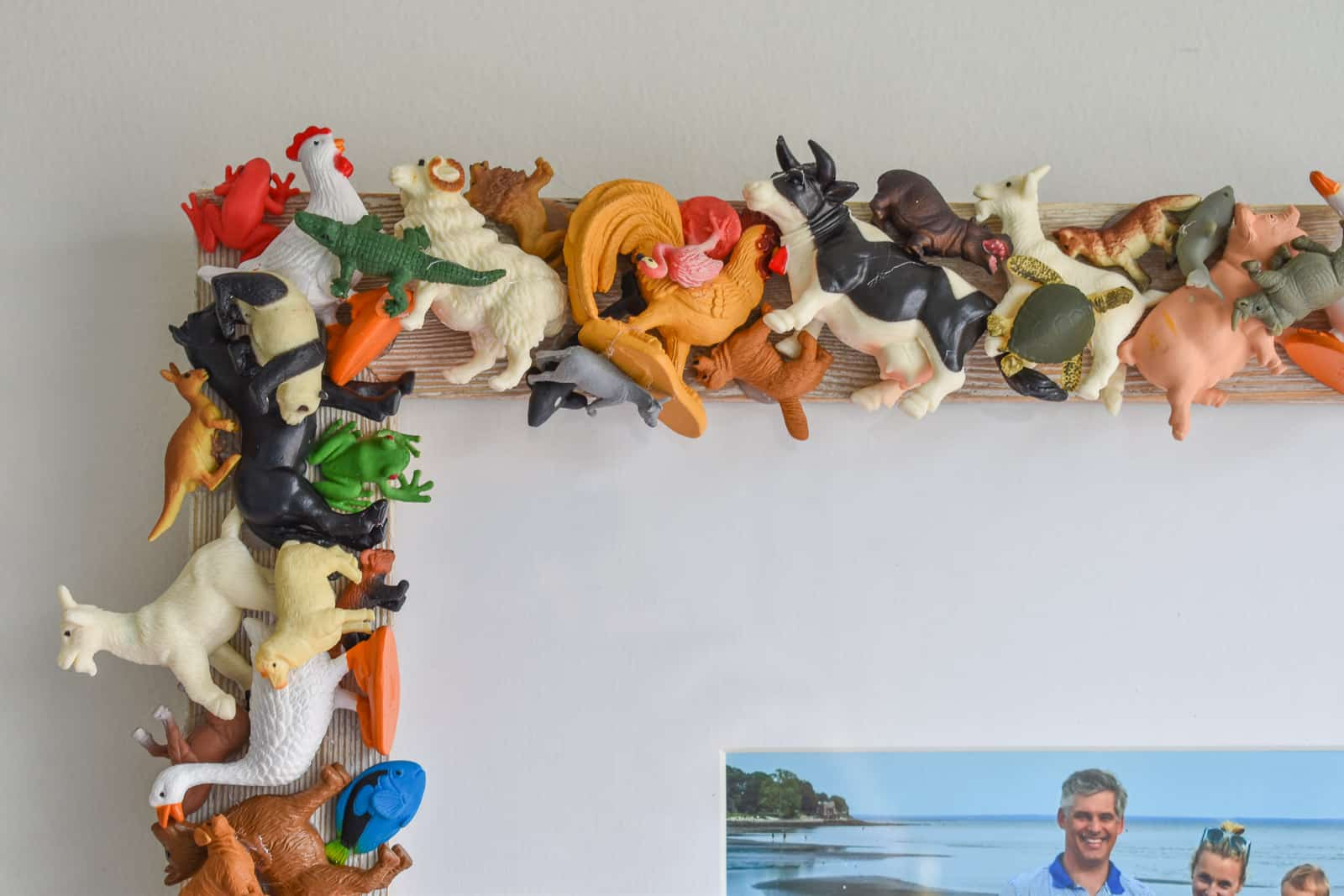 plastic animals as crafted frame