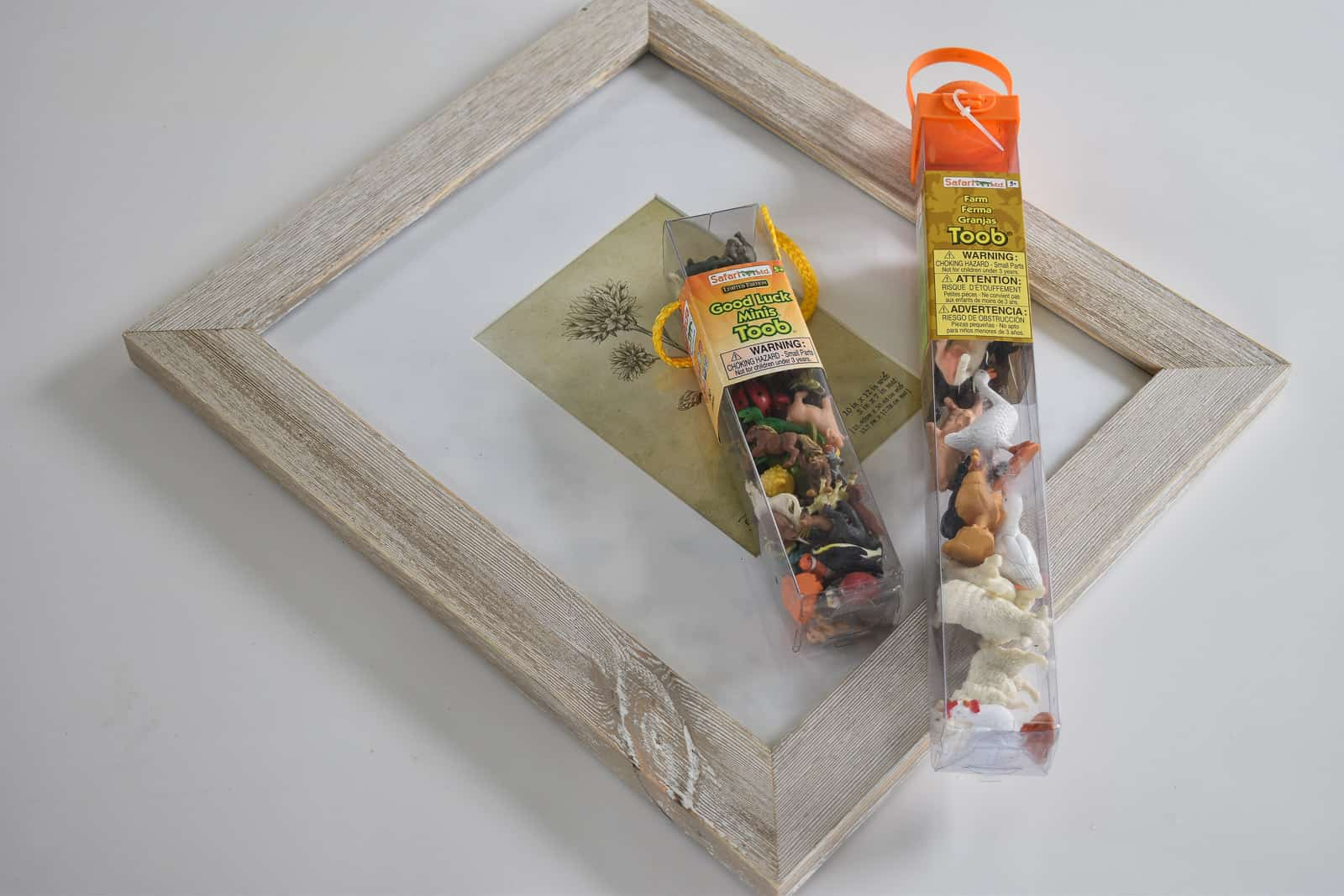 supplies for Safari plastic animal frame