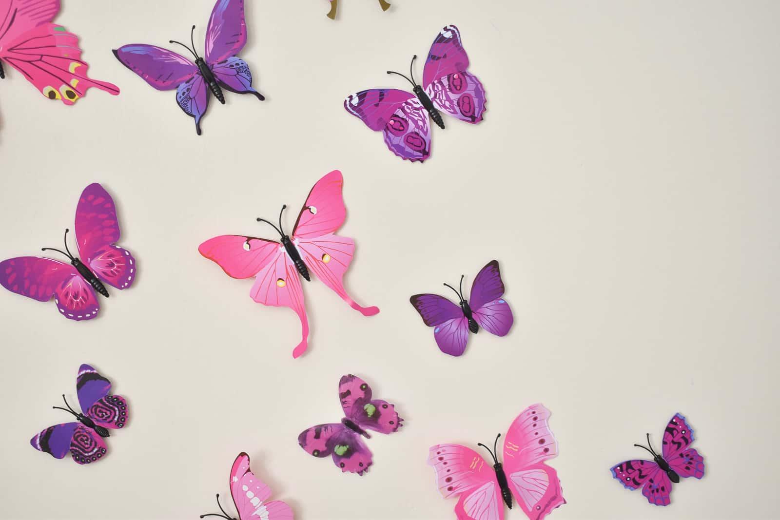 larger butterflies first