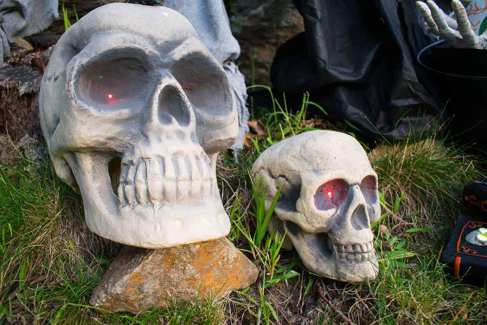 foam skulls for halloween decor