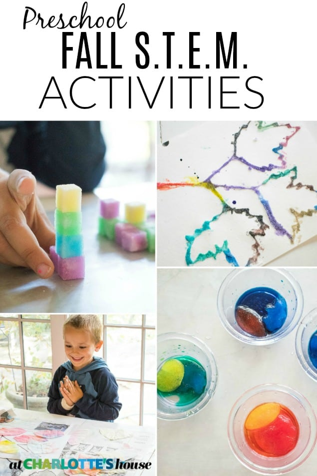 Four fall STEM activities