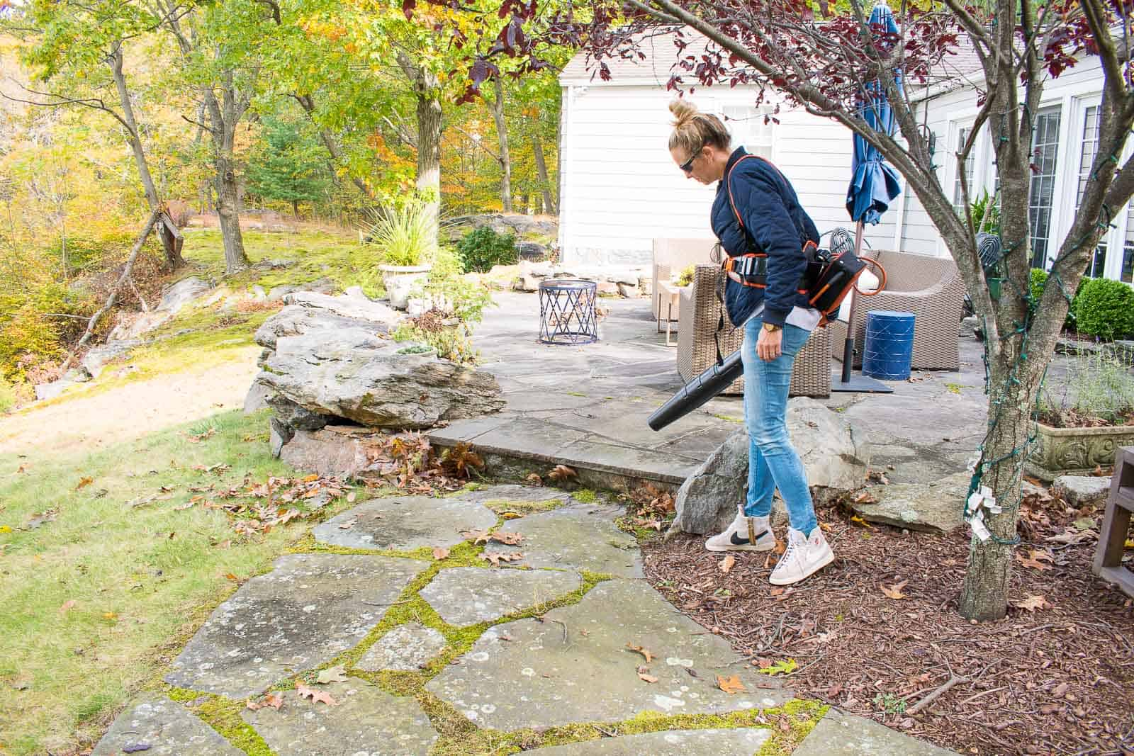 cleaning up our backyard with stihl