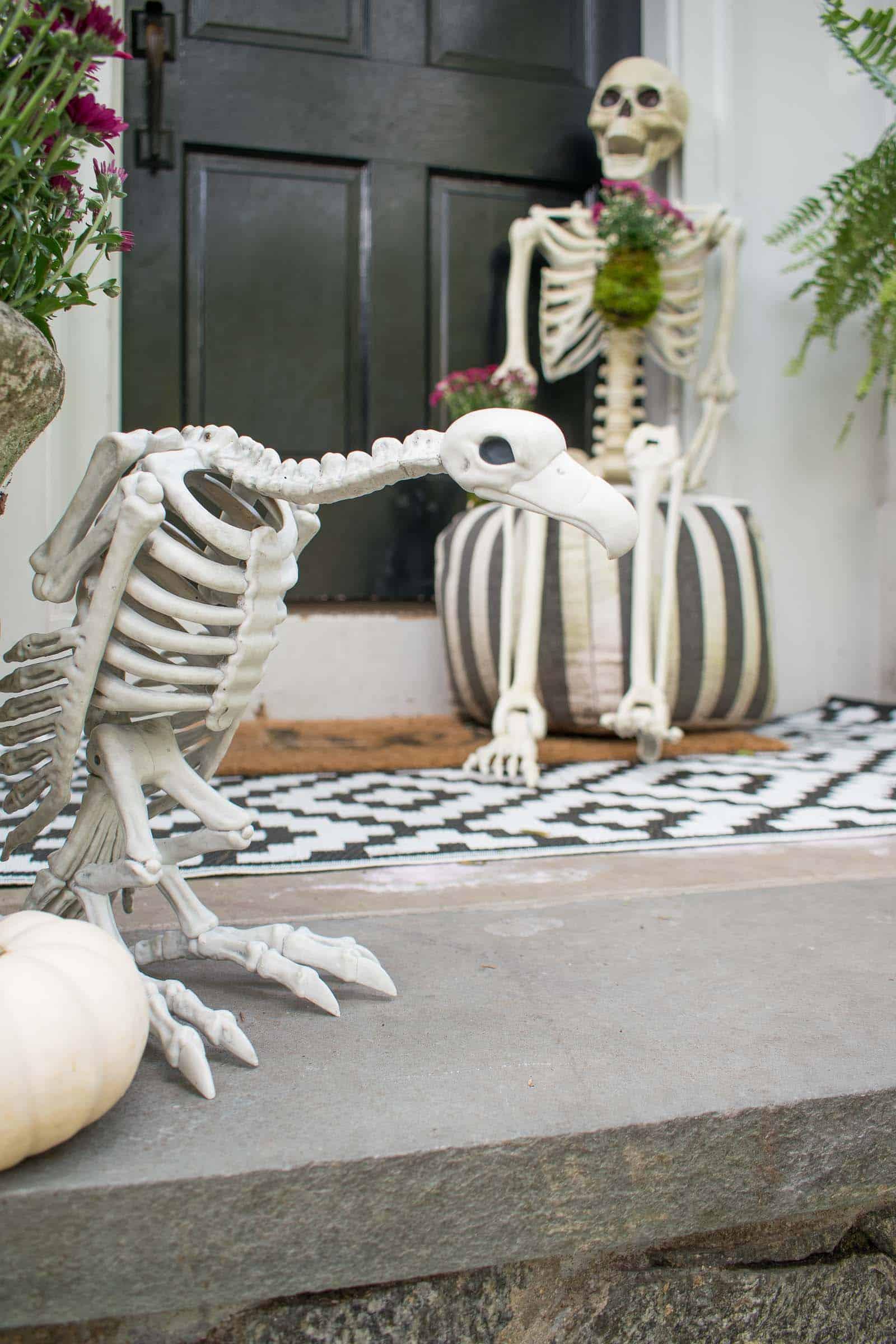 skeleton front door decor