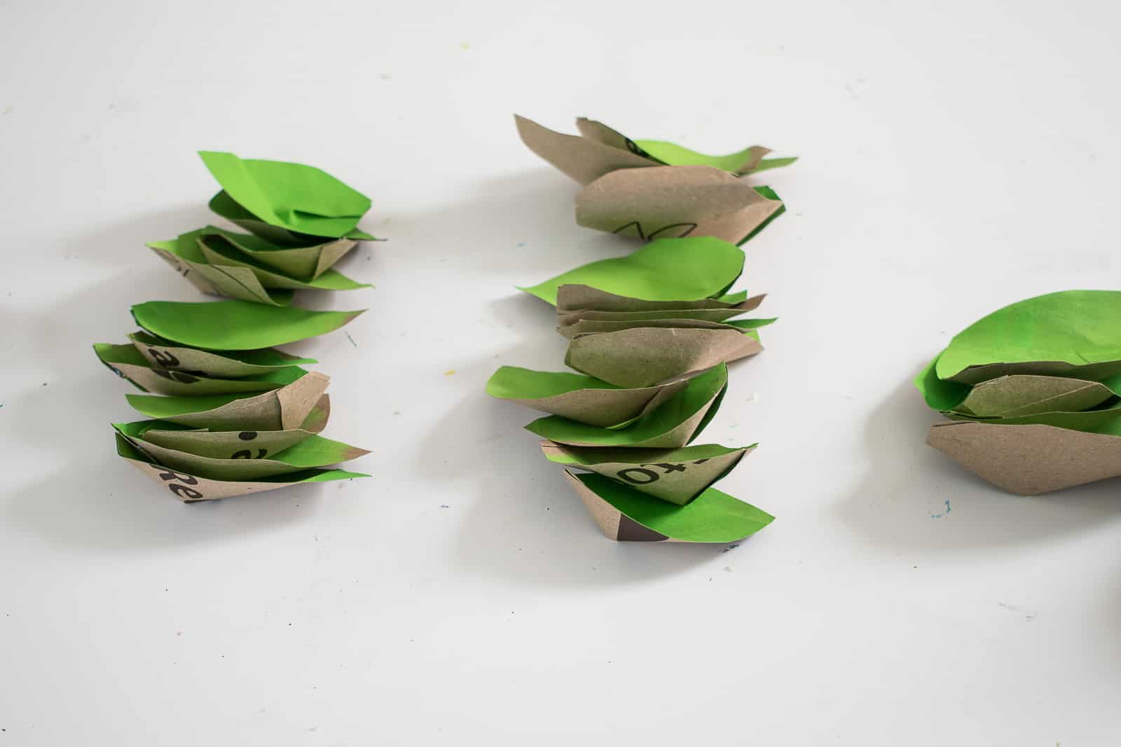 assemble the succulent petals in a ring