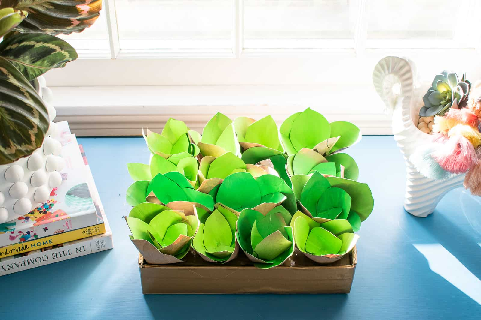 paper bag succulents