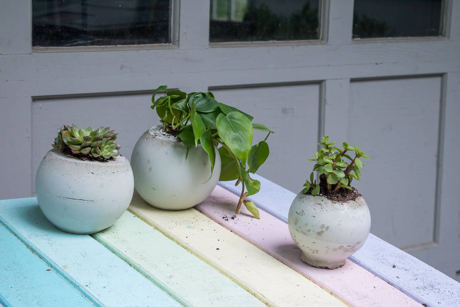 cement orb planters
