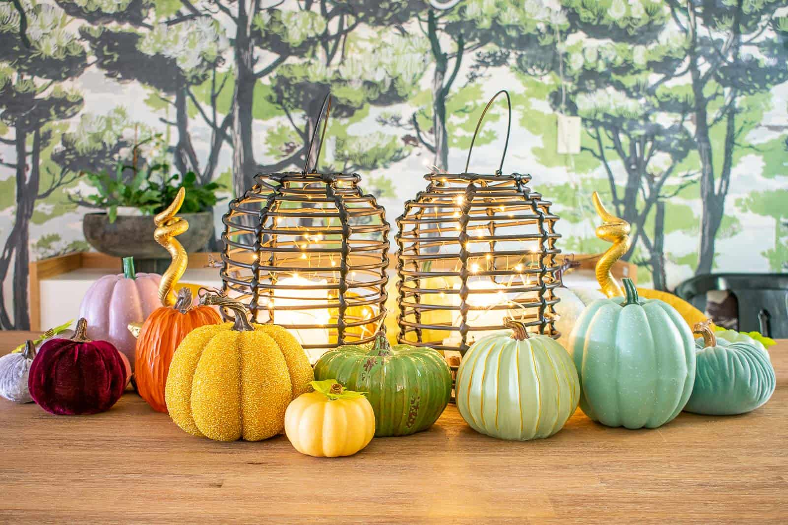 colorful fall pumpkins