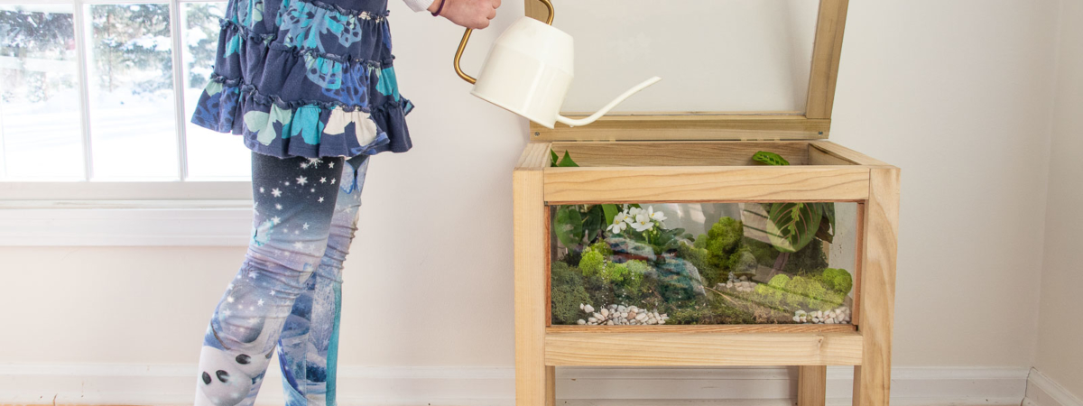 How to Build a Terrarium Table