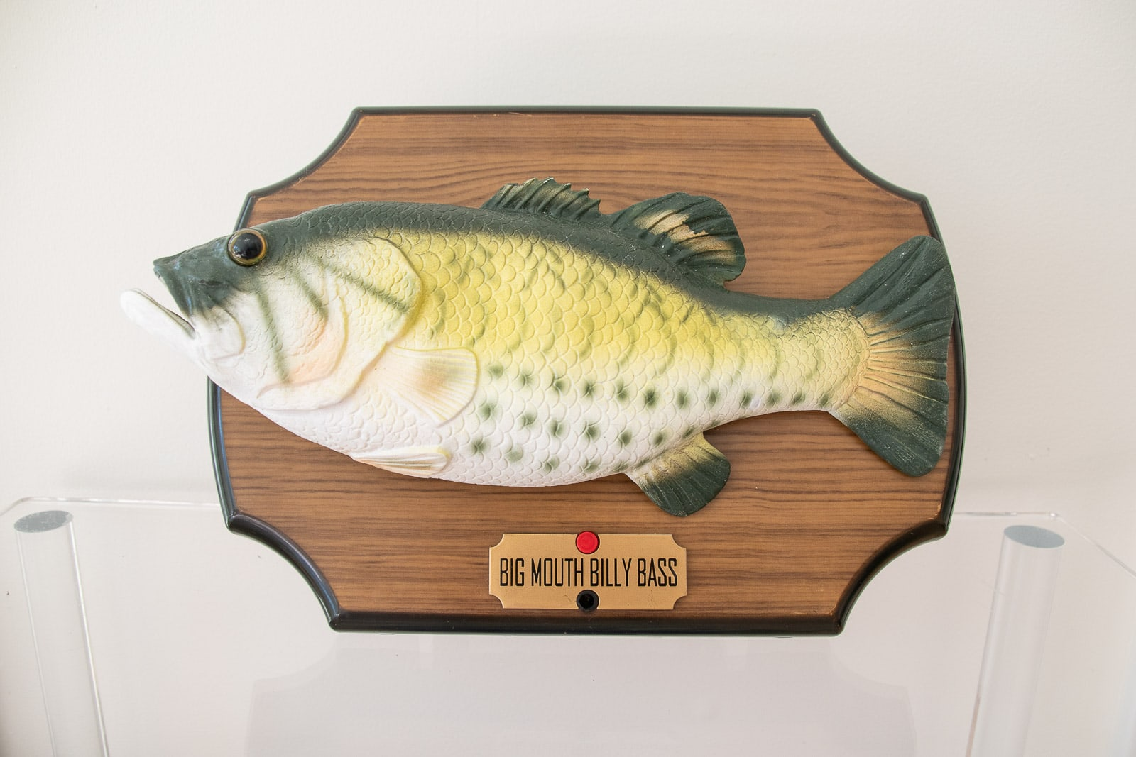 billy the big mouth bass