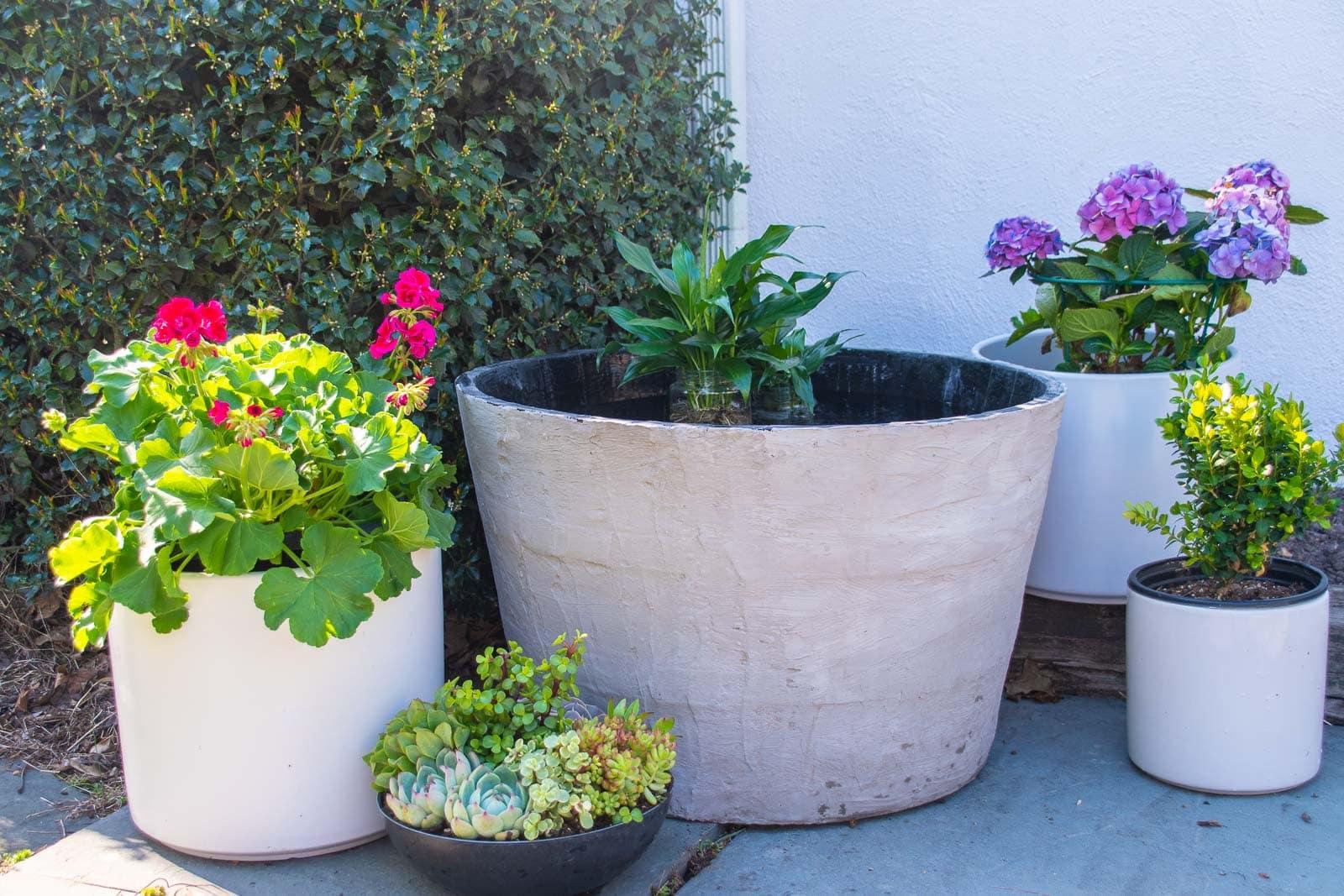 diy concrete garden planter