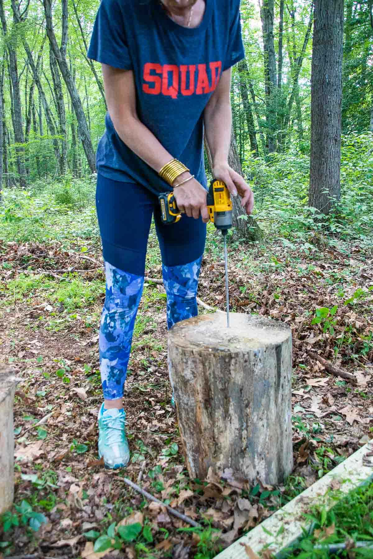 drilling into stumps